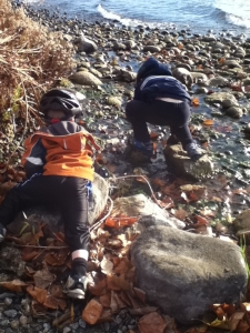 rockcrawling