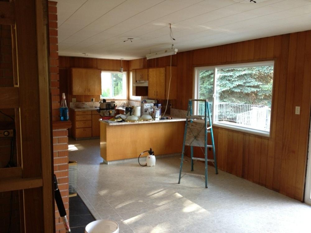 Be Doing A Less Than $5000 Kitchen Reno (6/6)