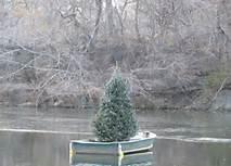 christmas tree adrift